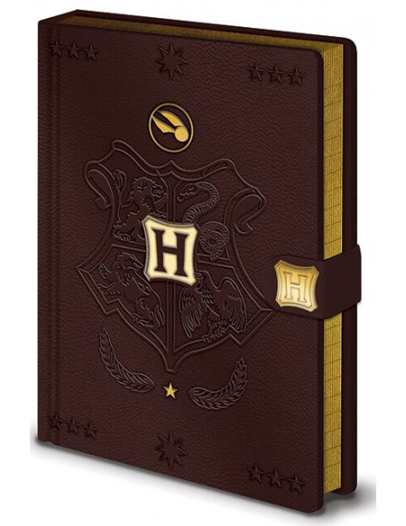 Harry Potter Quidditch - Cahier Premium Cahier Standard