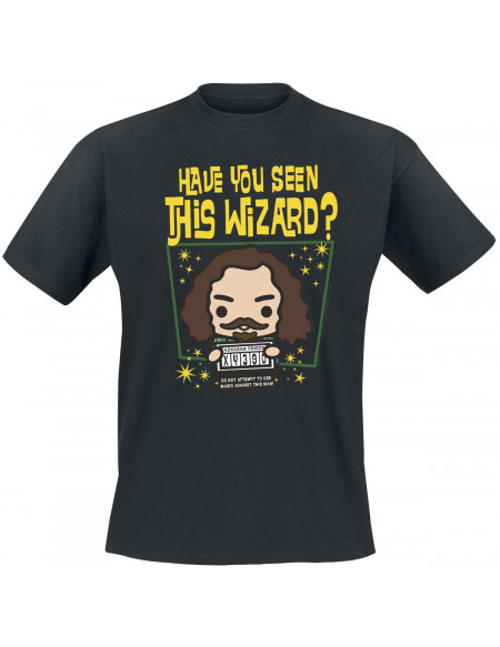 Harry Potter Have you seen this wizard? T-shirt noir