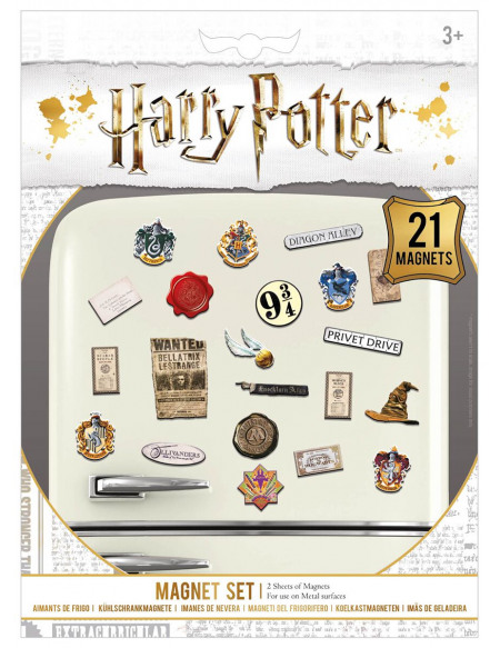 Harry Potter Wizardry Magnette frigo multicolore