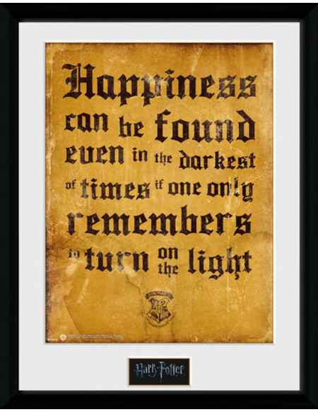Harry Potter Happiness Photo encadrée multicolore