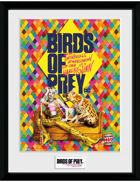 Birds Of Prey One Sheet Hyena Photo encadrée Standard