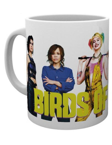 Birds Of Prey Group Mug multicolore