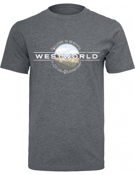 Westworld Welcome To Westworld T-shirt anthracite chiné
