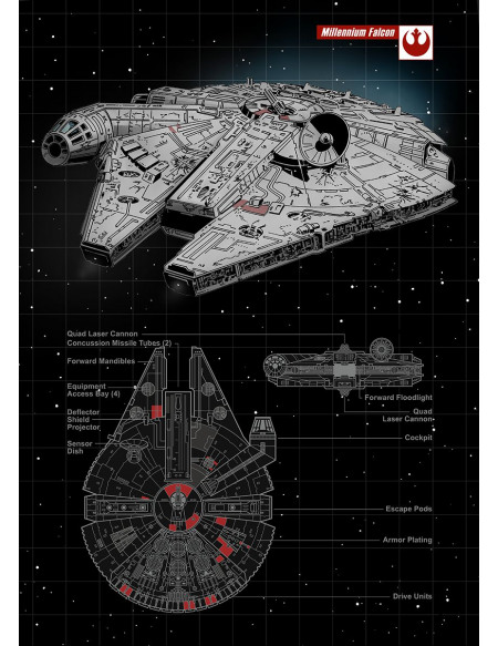 Star Wars Plaque - Faucon Millenium Photo murale Standard