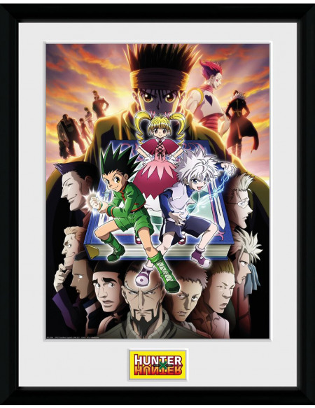 Hunter x Hunter Tableau Livre Photo encadrée multicolore