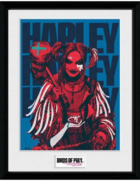 Birds Of Prey Harley Red Photo encadrée Standard