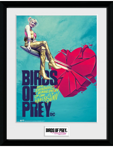 Birds Of Prey One Sheet Bullet Photo encadrée Standard