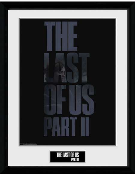 The Last Of Us The Last Of Us 2 - Logo Photo encadrée Standard