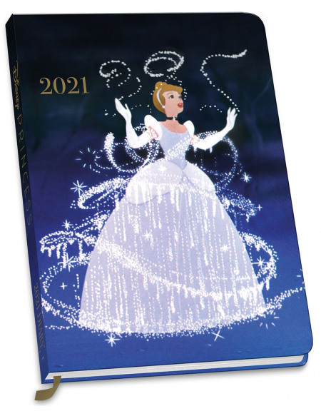 Princesses Disney Agenda multicolore