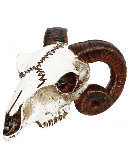 Alchemy England Crâne Bouc - Crâne Miniature Crâne décoratif Standard