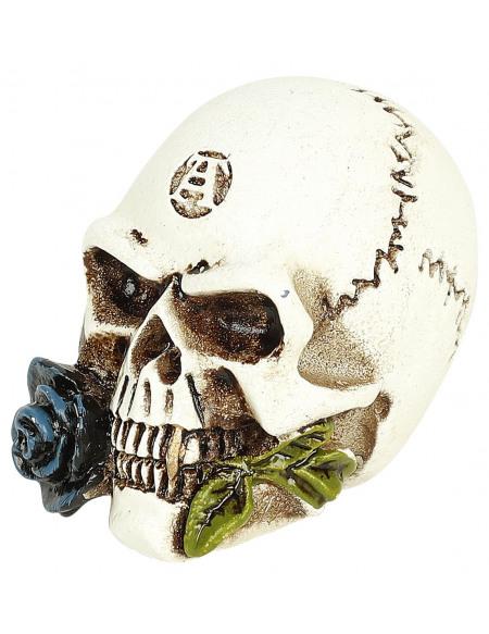 Alchemy England Crâne D'Alchimiste : Crâne Miniature Crâne décoratif Standard