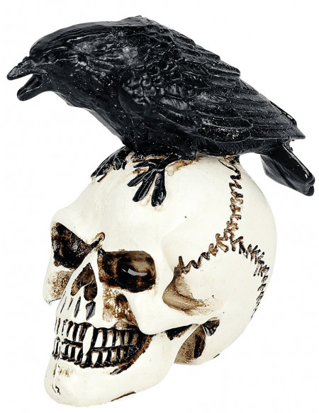 Alchemy England Crâne Corbeau - Crâne Miniature Crâne décoratif Standard