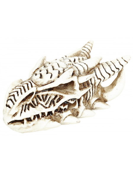 Alchemy England Crâne De Dragon : Crâne Miniature Crâne décoratif Standard