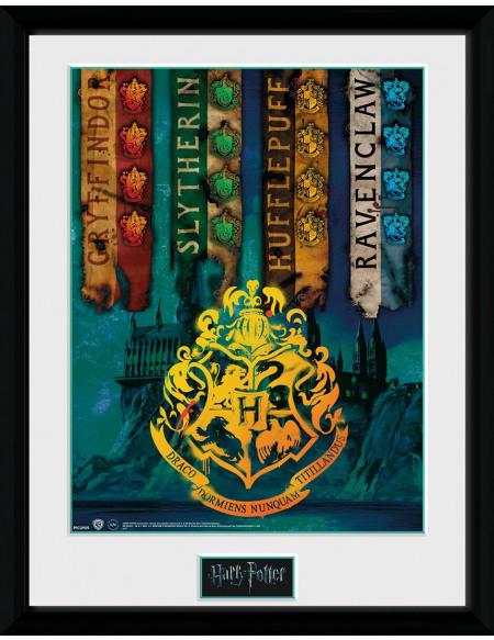 Harry Potter Drapeaux Des Maisons Photo encadrée Standard