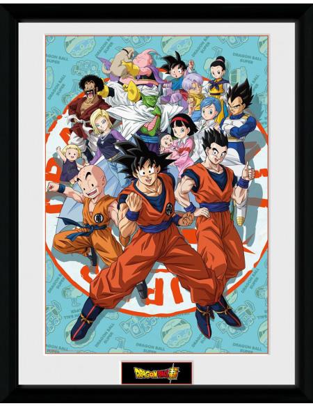 Dragon Ball Dragon Ball Super - Groupe Universe Photo encadrée Standard