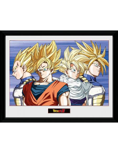 Dragon Ball Dragon Ball Z - Groupe Photo encadrée Standard