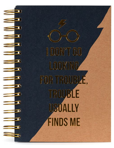 Harry Potter I Don't Go Looking For Trouble Cahier multicolore